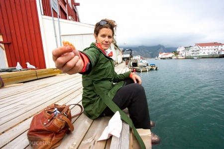 Shrimp anyone? Lunch snack in Henningsvar, Lofoten Islands