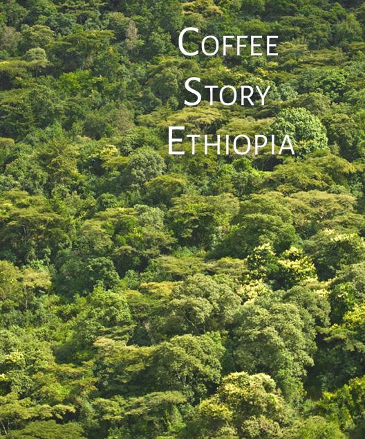 CoffeeStory2