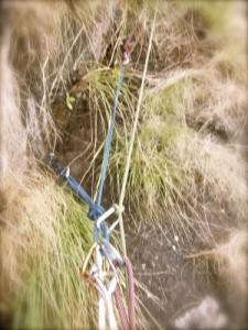 Anchor in Vertical Grass, Mozambique