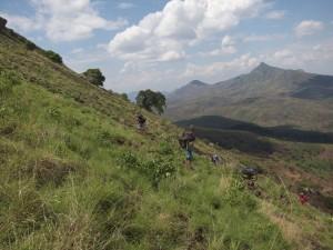 Porters on the flanks of Mt Namuli. Photo by Majka Burhardt
