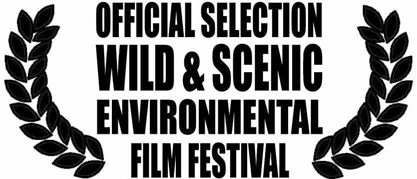 W_S_OFFICIALSELECTION2